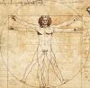 Anatomie et Physiologie - AP1