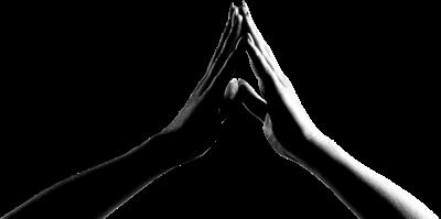 Journée Découverte et d'Initiation à la Kinésiologie